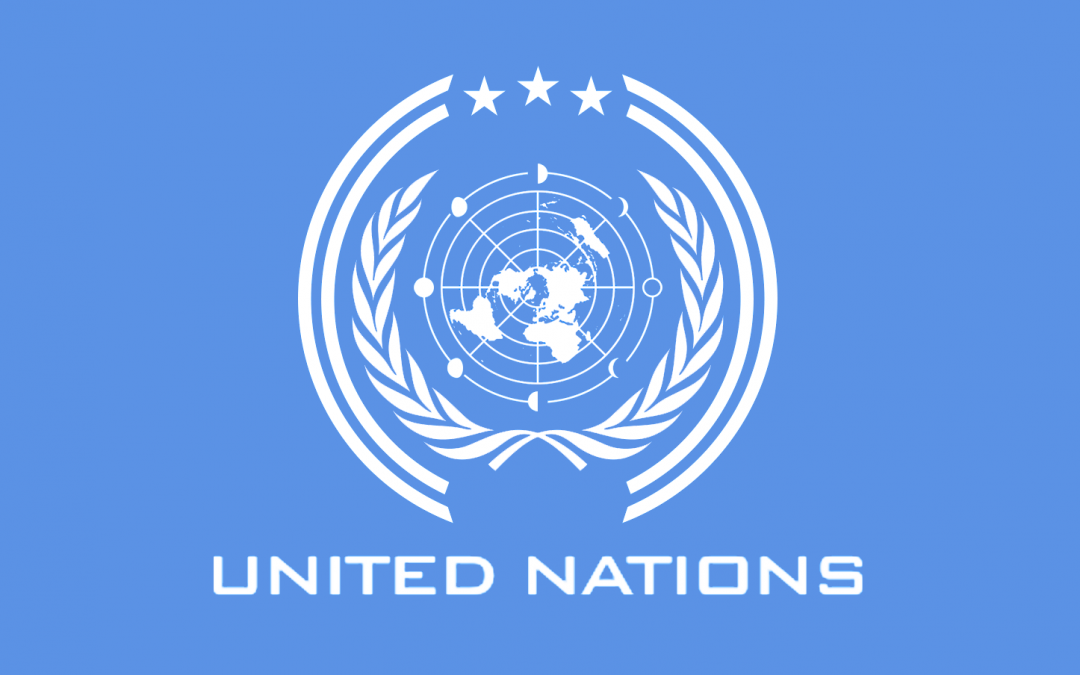 The CEELI Institute at the United Nations